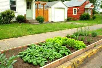Preventing Garden Vandalism Protecting Gardens Along