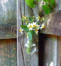 Recycle Light Bulb Into Vase Craft Organic