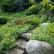 Rock Garden Decor Interior Home Design Decorating
