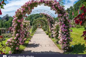 Rose Arches Garden Rosenneuheitengarten