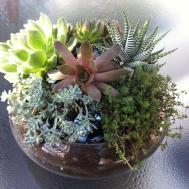 Seasonal Urns Decorating