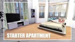 Sims Apartment Renovation Female Chic