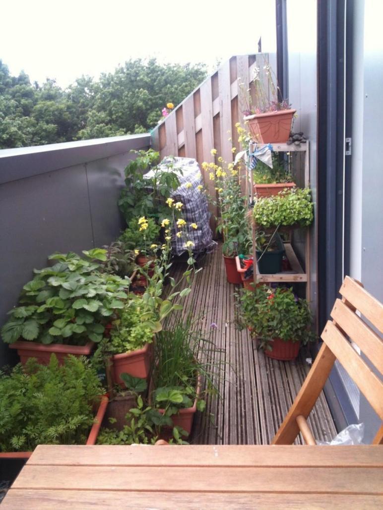 Small Apartment Balcony Garden Ideas All