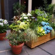 Small Backyard Garden Patio House Stone Floor
