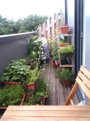 Small Balcony Ideas India Casa Jardim
