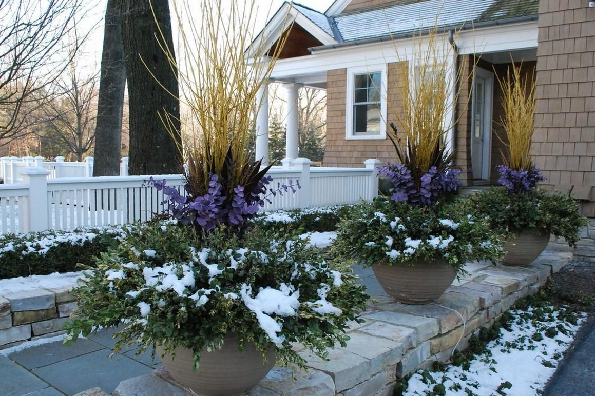 10 Spectacular Winter Garden Designs Ideas That You Must See Right