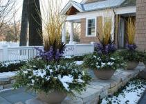 Top Best Winter Garden Design Ideas