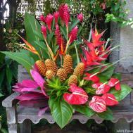 Tropical Vase Arrangement Julie Flower Shoppe