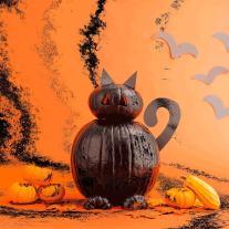 Turn Your Pumpkins Into Stoop Cat Brit