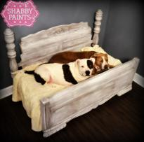 Upcycled Pet Beds Transformed Shabby Paints