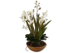 Uttermost Moth Orchid Planter Ut