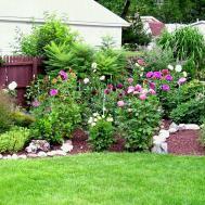 Water Wise Landscape Northeast Diy Home Garden