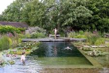 Water World Natural Swimming Pool Lily Pads Included