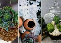 Welcome Spring Creative Diy Garden Projects