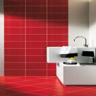 White Marble Flooring Designs Red