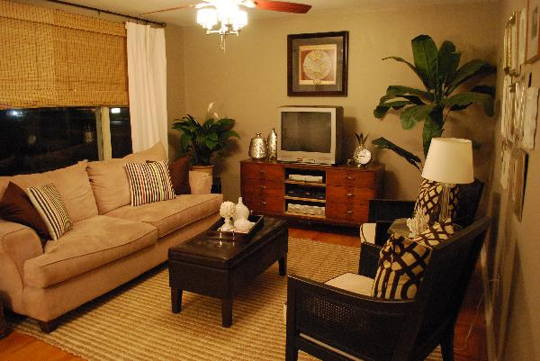 Living Room Arrangements  The Flat Decoration