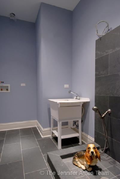 Dog Shower  Contemporary  laundry room