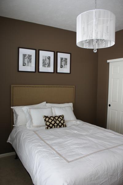 light brown paint bedroom room Bedroom with Brown Walls - Contemporary - bedroom - Behr