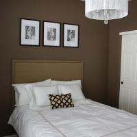 Mocha Brown Walls Design Ideas