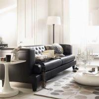 Leather Sofa Design Ideas