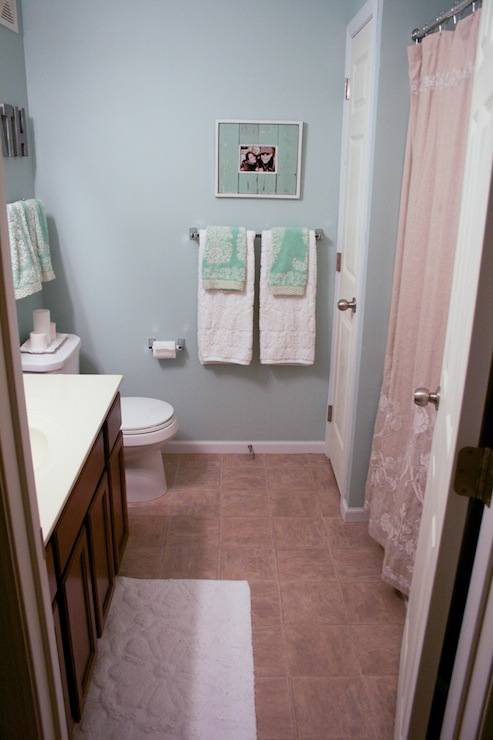 Bathroom  Benjamin Moore Palladian Blue