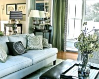 Blue Sofa - Transitional - living room - Benjamin Moore ...