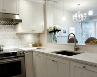 White Granite Countertops - Transitional - kitchen ...