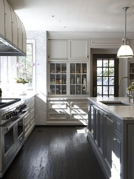Gray Kitchen Ideas  Transitional  kitchen  Benjamin Moore Thunder  Tracery Interiors