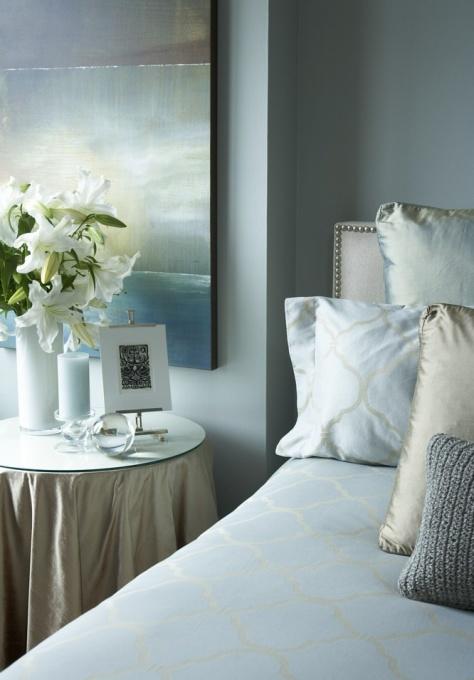 Blue Walls Transitional  bedroom  Benjamin Moore