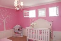 Pink Nursery Ideas - Traditional - nursery - Benjamin ...