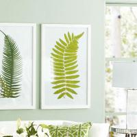 Perennial Fern Prints ?? Hawaiian - Wall Art - Wisteria