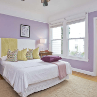 Lavender Walls Design Ideas