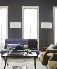 Purple Sofa - Transitional - living room - Amanda Nisbet ...
