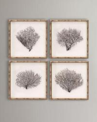 Framed Sea Fans - Neiman Marcus