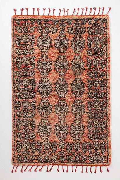 Banksia Rug I Anthropologiecom