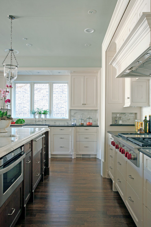 Blue Ceiling  Transitional  kitchen  Benjamin Moore Ocean Air  Burns and Beyerl Architects