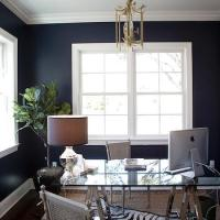 Navy Walls with Board and Batten - Transitional - Den ...
