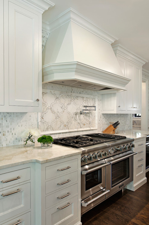 Taj Mahal Quartzite Transitional Kitchen 2 Design Group