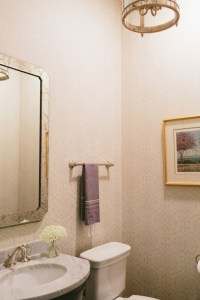 Powder Room Mirrors Design Ideas