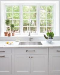 Calcutta Marble Countertops - Transitional - Kitchen ...