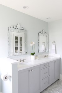 Bathroom Cabinets Painted Gray - Transitional - Bathroom ...