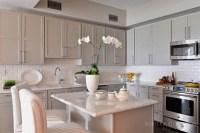 Light Taupe Kitchen Cabinets - Transitional - Kitchen