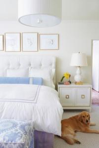 White Bedroom with Blue and Purple Accents - Transitional ...