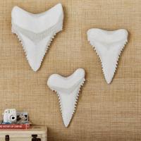 White Paper Mache Shark Teeth Wall Decor