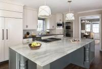 White Quartz Countertops - Transitional - kitchen - Tobi ...