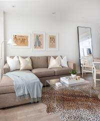 Taupe Sofa Design Ideas
