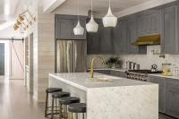 Gray Cabinets with Honed Black Marble - Transitional - Kitchen