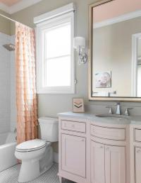Pink and Gray Kid Bathroom Color Scheme - Traditional ...