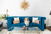 Gold Sunburst Mirror Over a Sapphire Blue Velvet Tufted ...