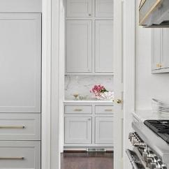 Vintage Kitchen Knobs And Pulls The Home Store Gray Pantry Doors With Aged Brass Oval Door ...